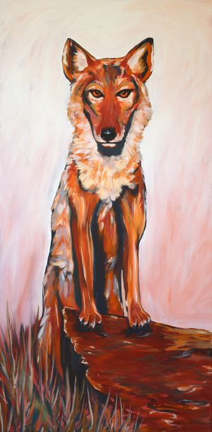 Coyote Painting - By Artist Julie Wright